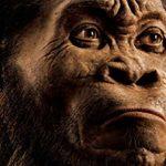 Les premiers humains ont quitté l'Afrique bien plus tôt que ce que nous pensions