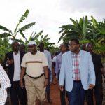 Burundi : le gouvernement dévoile un plan de sauvetage de l'IRAZ