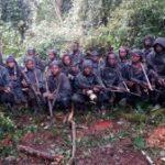 Communiqué du Mouvement Rwandais pour le Changement Démocratique (MRCD) n° 2018/07/01