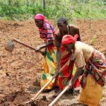 Burundi : le taux d'industrialisation tourne autour de 15 à 16%