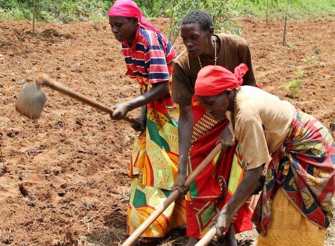 """38,6 millions $ pour 99.200 ménages ruraux du Burundi grâce au FIDA afin de """"réduire durablement la pauvreté"""""""