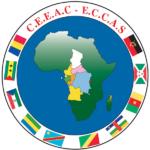 Afrique centrale: vers une seule organisation sous-régionale en 2023