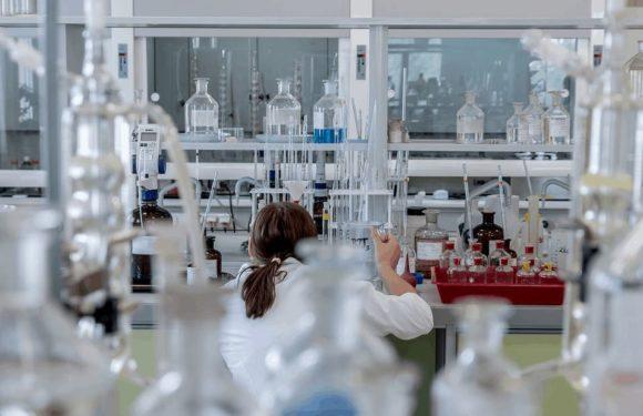 Une firme israélienne se donne quelques mois pour lancer un traitement contre le cancer