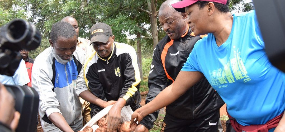Burundi : Couple Présidentiel – Les récoltes de pomme de terre 10 fois supérieur à ce qui était attendu