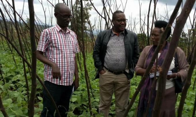 Le Ministre de l'agriculture visite les projets financés par le FIDA