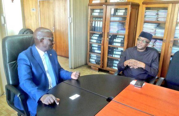 Burundi : Le Nigéria intéressé par le café, le thé et le manioc burundais