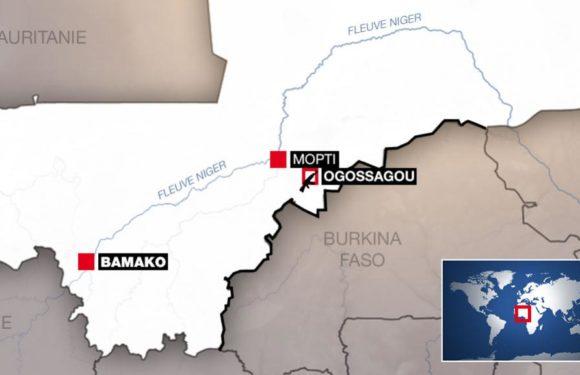 Massacre d'Ogossagou au Mali: un possible crime contre l'humanité, selon l'ONU