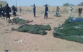 Mali: au moins 95 personnes tuées dans l'attaque d'un village dogon
