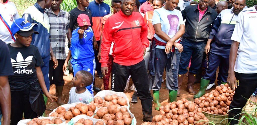 Burundi : Le Chef d'Etat procède à la récolte de pommes de terre …