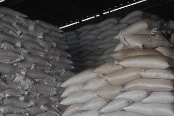 Remise officielle d'un don japonais de deux cents tonnes de riz octroyées au gouvernement du Burundi