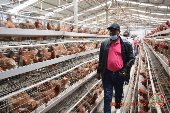 Ngozi/Gitega: Le Gouvernement entend redynamiser le secteur de l'élevage du petit