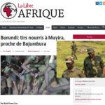 Burundi : Le Scénario Gbagbo lancé  - La Belgique veut créer une rébellion avec le CNL et le Rwanda