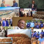 Burundi / Petit tour sur l'actualité Africaine –  [  BURUNDI /  GENOCIDE 1972 : CVR -  Total de 1.751 restes de corps sortis des 4 fosses de MASHITSI, à GIHETA  -  GITEGA      Arrivée du Coronavius en Afrique     Tentative d'assassinat raté du 1er Ministre du SOUDAN   Embattled MALAWI President Dissolves Cabinet ... ]