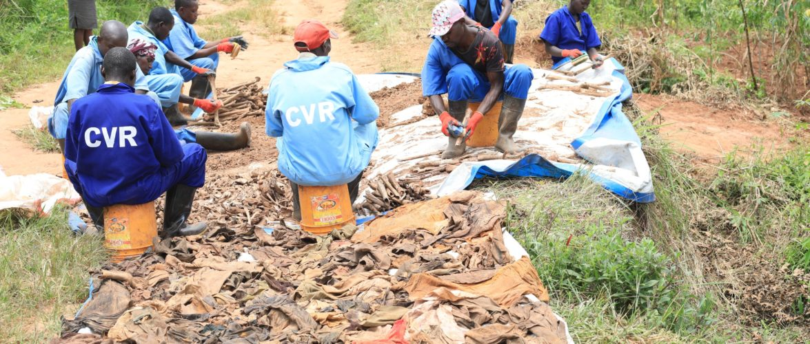 GENOCIDE 1972 :  Le Site de  NYABUNYOVU – 750 restes de corps excavés,  GIHETA, GITEGA / BURUNDI