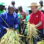 Chine : Le CNDD-FDD BUBANZA visite les coopératives SANGWE spécialisées riz / Burundi