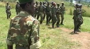 Militaires rwandais en RDC: les drôles de démentis du gouverneur et de l'ONU
