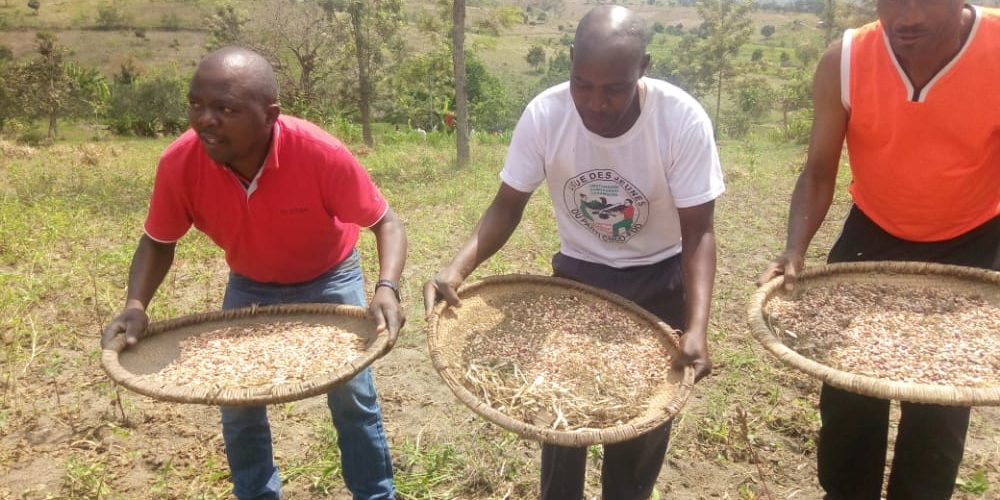 Le CNDD-FDD BUHINYUZA etait aux travaux champêtres – MUYINGA / BURUNDI