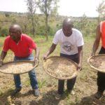 Le CNDD-FDD BUHINYUZA etait aux travaux champêtres - MUYINGA / BURUNDI