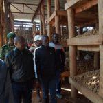 Le Chef de l'Etat demande aux agriculteurs d'apprendre à utiliser les semences sélectionnées
