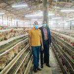 MANOVU DREAM FARM produit plus de 5.000 œufs journalier, NGOZI / BURUNDI