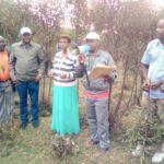 L'ETAT récupère les champs de 150 hectares de la SOKINABU, MURAMVYA / BURUNDI
