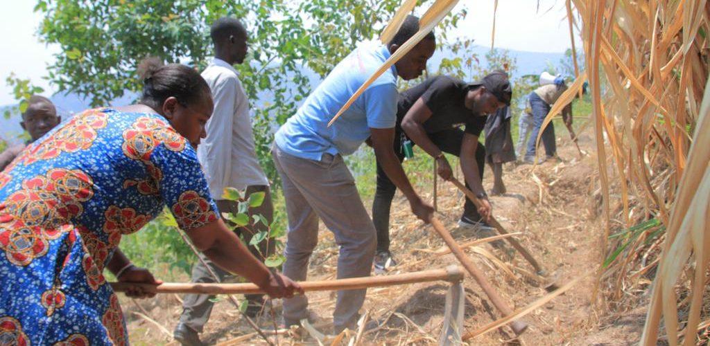 TRAVAUX DE DEVELOPPEMENT COMMUNAUTAIRE : Assainir les courbes de niveau anti-érosive en commune KANYOSHA, BUJUMBURA / BURUNDI