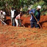 TRAVAUX DE DEVELOPPEMENT COMMUNAUTAIRE  : Traçage des haies anti-érosives à GIHOGAZI, KARUSI / BURUNDI