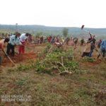 TRAVAUX DE DEVELOPPEMENT COMMUNAUTAIRE - Préparation de terrain de semis sur la colline NYAKERERA, CANKUZO / BURUNDI