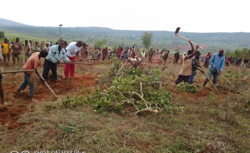 TRAVAUX DE DEVELOPPEMENT COMMUNAUTAIRE – Préparation de terrain de semis sur la colline NYAKERERA, CANKUZO / BURUNDI