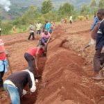 TRAVAUX DE DEVELOPPEMENT COMMUNAUTAIRE - Tracer des courbes de niveau en colline KIBOGOYE à MUYINGA / BURUNDI