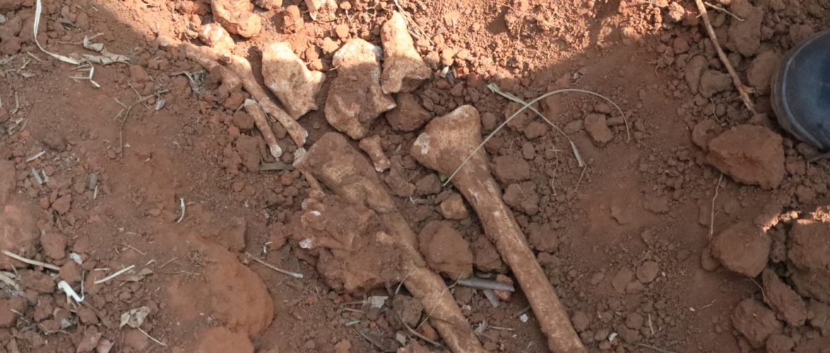 GENOCIDE DE 1972 CONTRE LES HUTU DU BURUNDI : 2 fosses communes à KIGWENA / RUMONGE