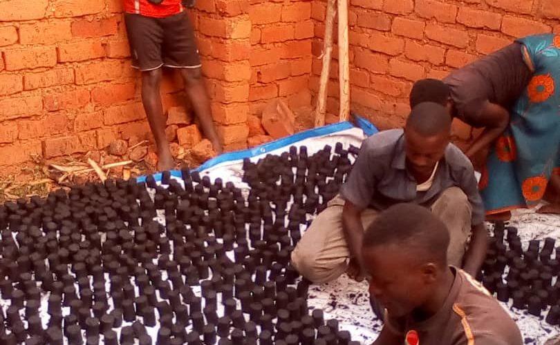 Produire des champignons et un charbon sans couper les arbres, à MAKAMBA / BURUNDI