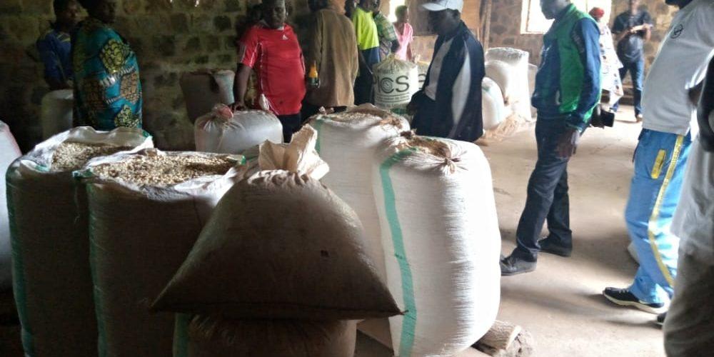 Les coopératives SANGWE de RUYIGI vont faire de la transformation agroalimentaire / BURUNDI