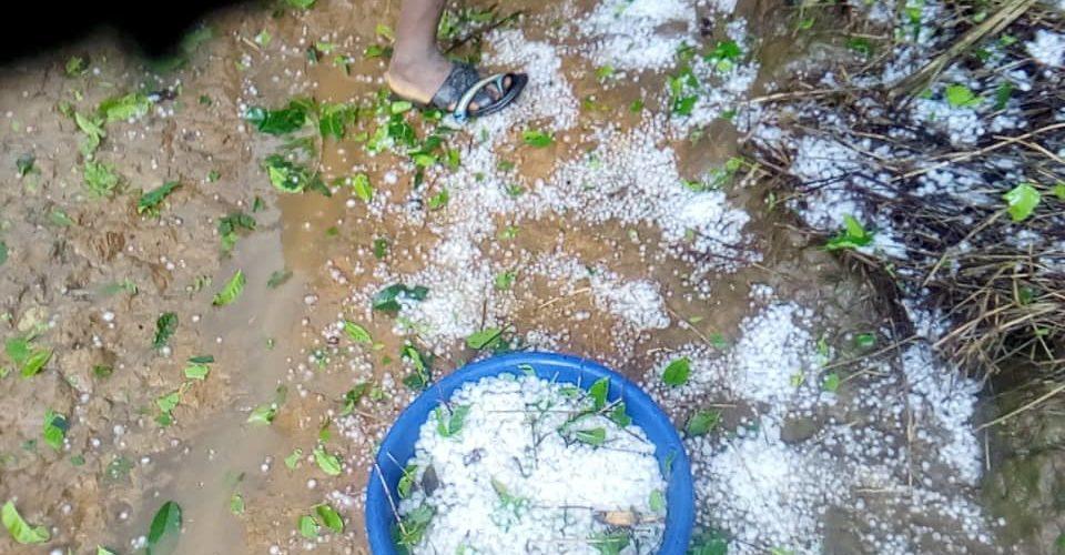 Dégâts causés par la pluie de grêle tombée à BUKINANYANA, CIBITOKE / BURUNDI