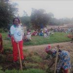 BURUNDI : TRAVAUX DE DEVELOPPEMENT COMMUNAUTAIRE - Activité champêtre à la Coopérative VASO à MUHA, BUJUMBURA
