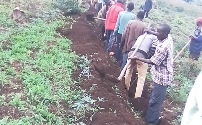 TRAVAUX DE DEVELOPPEMENT COMMUNAUTAIRE – Travaux champêtres sur les collines CERU et NYABIBUYE, à MUSONGATI, RUTANA / BURUNDI