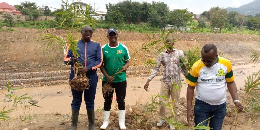 BURUNDI : TRAVAUX DE DÉVELOPPEMENT COMMUNAUTAIRE – Planter des bambous sur les rives de la rivière NTAHANGWA