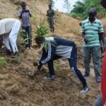BURUNDI : TRAVAUX DE DEVELOPPEMENT COMMUNAUTAIRE - Planter plusieurs eucalyptus dans la vallée de NYAKIZU, MUHA / BUJUMBURA