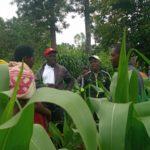 BURUNDI : Le CNDD-FDD NGOZI visite de la coopérative SANGWE à GAHWAZI, GABIRO