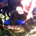BURUNDI : Un crocodile dans le lac DOGODOGO à RUGOMBO / CIBITOKE
