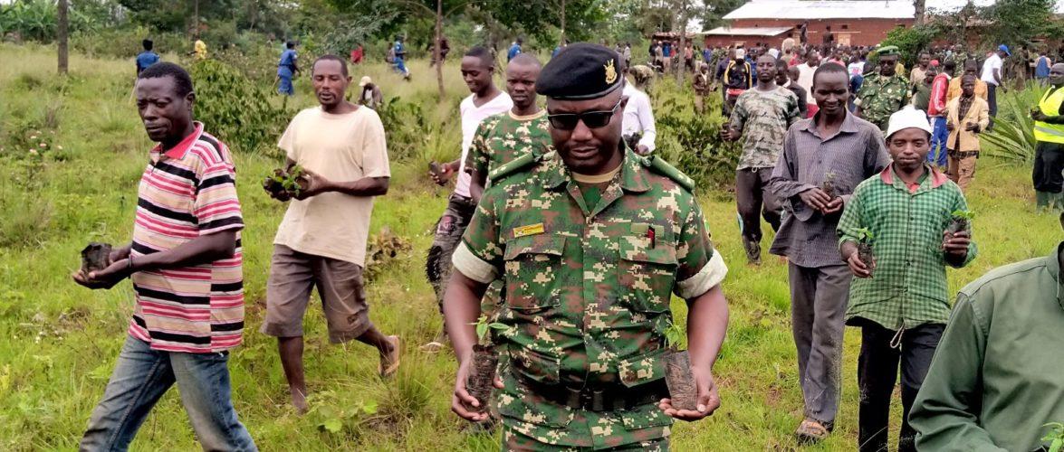 BURUNDI : TRAVAUX DE DEVELOPPEMENT COMMUNAUTAIRE – Planter plus de 4000 arbres en colline NTAMBA à MUYINGA