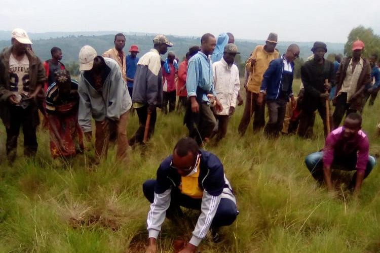 BURUNDI : TRAVAUX DE DEVELOPPEMENT COMMUNAUTAIRE –  Planter 12.000 plants d'eucalyptus à RUTEGAMA / MURAMVYA