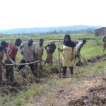 BURUNDI : L'administrateure rencontre les riziculteurs du marais de GASAKA / MAKAMBA