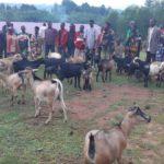 BURUNDI : L'ANACOOP évalue les projets autour des coopératives en zone MIVO / NGOZI