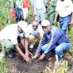 """Journée/arbre :""""Etendons et sauvegardons nos forêts et notre biodiversité, pilier du développement durable """""""