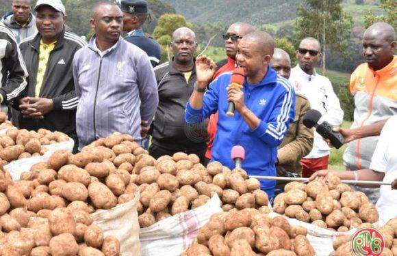 Mukike: le président du sénat satisfait de la production des coopératves Sangwe