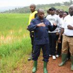 Le Chef de l'Etat encourage les différents projets réalisés par des producteurs agro-éleveurs des communes Mbuye et Rutegama de Muramvya