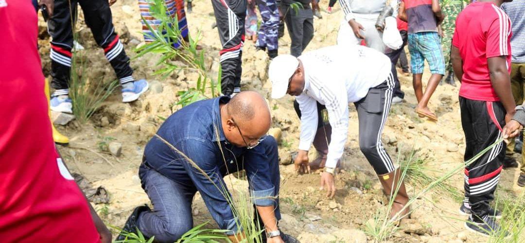 BURUNDI : TRAVAUX DE DEVELOPPEMENT COMMUNAUTAIRE – Planter des bambous sur les rives de la rivière NTAHANGWA / BUJUMBURA