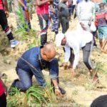 BURUNDI : TRAVAUX DE DEVELOPPEMENT COMMUNAUTAIRE - Planter des bambous sur les rives de la rivière NTAHANGWA / BUJUMBURA