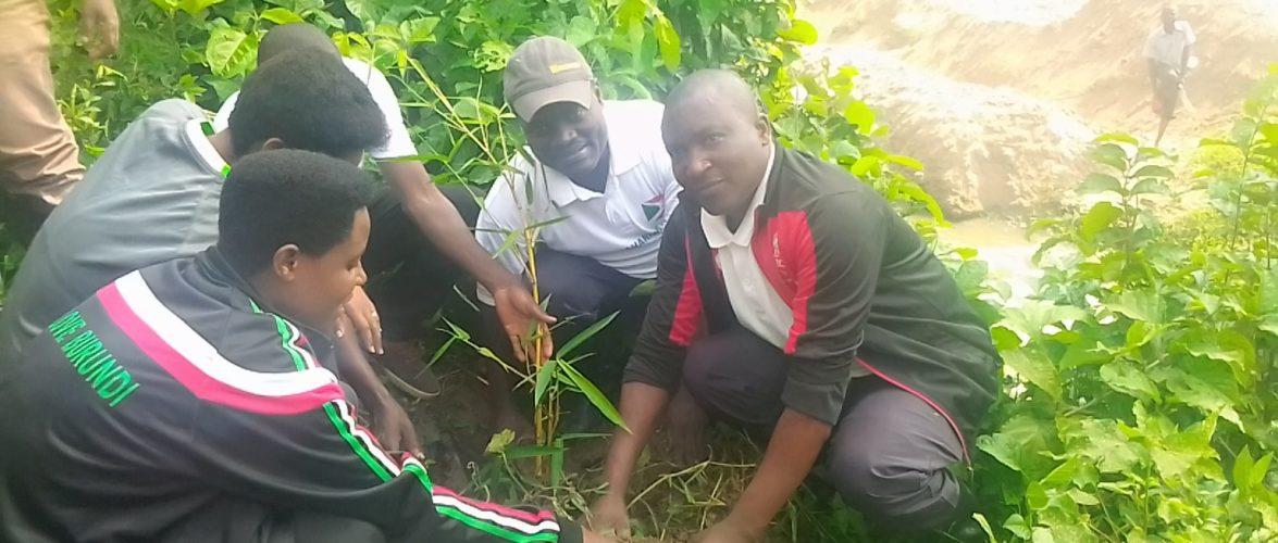 BURUNDI : TRAVAUX DE DEVELOPPEMENT COMMUNAUTAIRE – Planter des bambous sur la rivière KANYAMIGOGO / BUBANZA